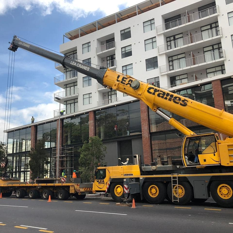 Transporting Trees | Crane Hire | Moving Trees & Crane Truck Hire