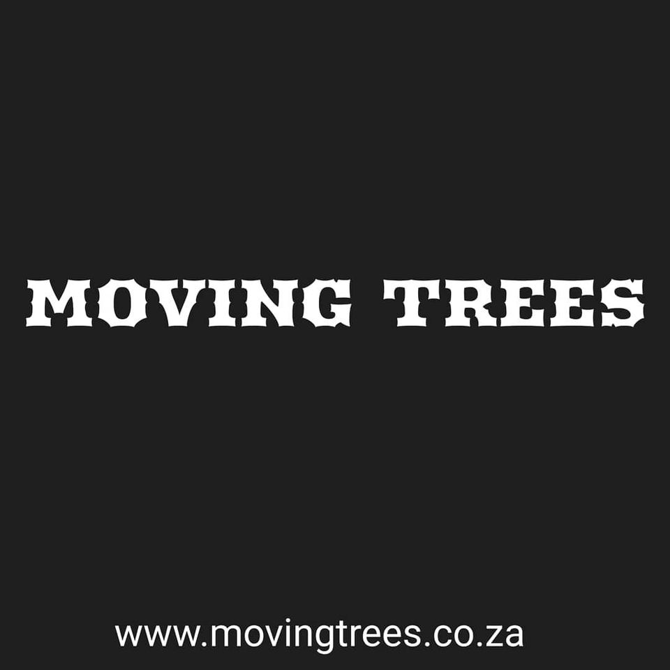 Largest Tree In South Africa | Oldest Tree In South Africa | South African Trees | Moving Trees