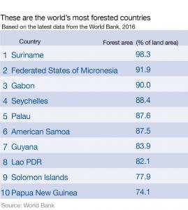 World Trees, World Forestsworld